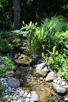 Three Dogs in a Garden: The Royal Manor B&B Garden in Niagara-on-the-Lake