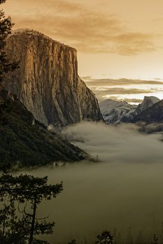 ~~Sunrise on El Capitan ~ a foggy morning, Yosemite National Park, California / USA by Brent Clark~~