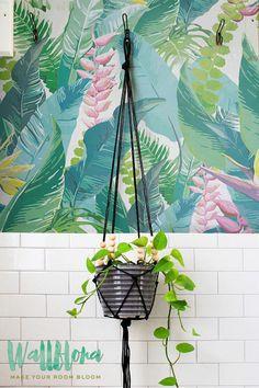 CALATHEA LEAVES pattern wallpaper, Leaves removable wallpaper, Exotic wall mural, Green wallpaper, 109