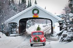 Photo of Man driving a vintage 1941 Ford pickup through a covered bridge with a Christmas wreath on the grill and a tree in the back during ...