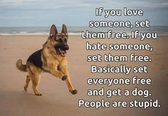 Set everyone free..... & get a dog they never let you down!!
