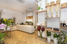 Daisy's Florist Interior / Fit Out