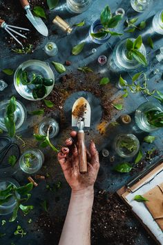 8 Amazing Flat Lay Photography Ideas A gardening themed flat lay still life with plants in glass jars and a hand holding an earth covered trowel The post 8 Amazing Flat Lay Photography Ideas appeared first on Fotografie. Flat Lay Photography, Still Life Photography, Creative Photography, Digital Photography, Amazing Photography, Photography Tips, Nature Photography, Photography Flowers, Glass Photography