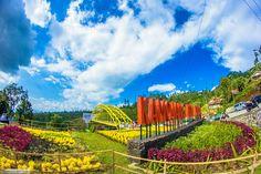 MyOwnWayDaily: Kamojang Hill Bridge