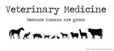 Definitely NOT the phrase to use in your vet school interview!