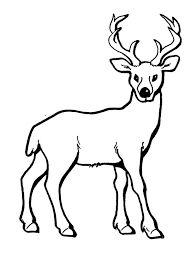 Výsledek obrázku pro omalovánka zvířátka, která v zimě spí Dog Coloring Page, Coloring Pages, Art Pages, Puppets, Quilling, Zentangle, Moose Art, Doodles, Printables