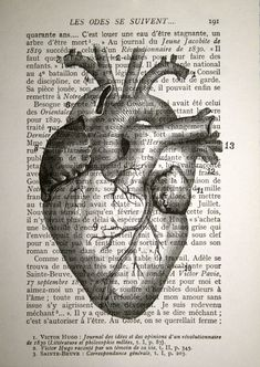 Anatomical Heart Print on Vintage French Book Page - 5 x 7 - Human Heart Anatomy Print. $10.00, via Etsy.