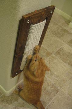 Rascador de Mecate para Gatos Contáctenos y cotice con nosotros! http://sleepets.wix.com/sleepets #CatIdeas
