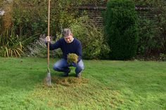 How to edge a lawn with bricks Scarifying a lawn video Brick Garden Edging, Lawn Edging, Garden In The Woods, Lawn And Garden, Garden Paths, Woodland Plants, Lawn Care Tips, Landscape Edging, Outdoor Landscaping