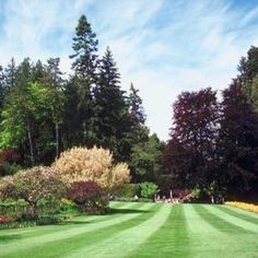More land often equals more landscaping.                                                                                                                                                      More