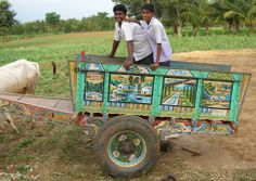 Bullock cart, Mandya District, Karnataka 2007