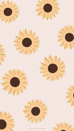 Wallpaper Pastel, Cute Fall Wallpaper, Simple Iphone Wallpaper, Sunflower Wallpaper, Iphone Wallpaper Tumblr Aesthetic, Cute Patterns Wallpaper, Iphone Background Wallpaper, Aesthetic Pastel Wallpaper, Aesthetic Wallpapers