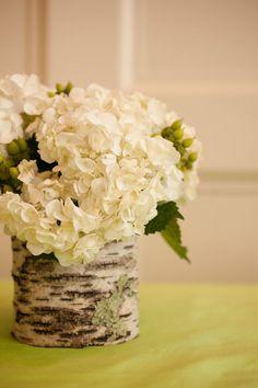 white flowers in birch bark