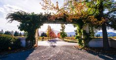 Napa Valley Fall Guide | Jetsetter