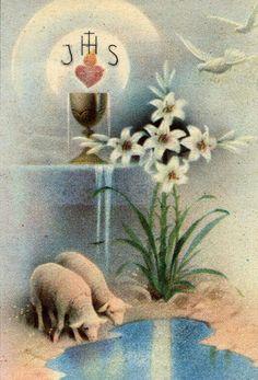 La Santissima Eucarestia - Raccolte - Google+