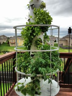 #TowerGarden A Vertical Aeroponic Growing System. No Dirt, No Kneeling, No  Weeding