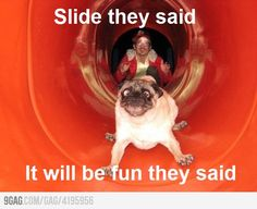 Slide they said...this is how I felt today!!!!
