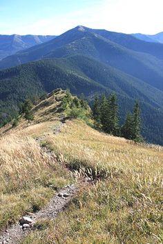 Hřeben hory Bôr a hlavní hřeben Nízkých Tater