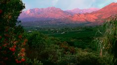 From TruthEnsemble.blogspot.com ... Ojai at sunset. Yes, I think it's a gorgeous time of the day. Can you tell? ;-)