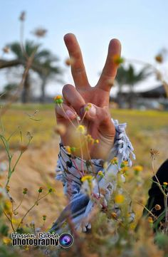 From Gaza