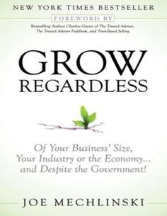 Grow Regardless: Of Your Business' Size, Your Industry or the Economy and Despite the Government! by Joe Mechlinski