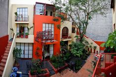 The Red Treehouse in Mexico City
