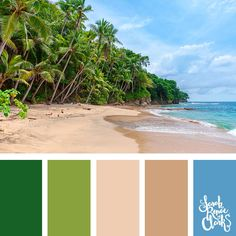 Island hues // Summer Color Palettes // Click for more color schemes, mood boards and color combinations inspired by Summer at https://sarahrenaeclark.com #color #colorscheme #colorpalette