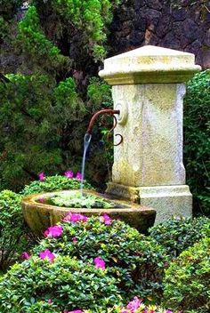 Want your garden to spring to life? Add a pond or water feature. You can't deny – a water feature in the garden really bumps up the overall ambiance. Garden Water Fountains, Water Garden, Outdoor Fountains, Garden Ponds, Koi Ponds, Summer Garden, Fountain Garden, Garden Tips, Landscape Design