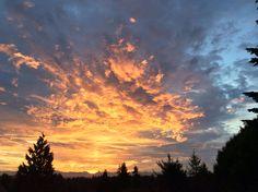 Spectacular Seattle sunrise this morning.