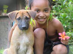 puppy love https://ift.tt/2GLLp9z #Puppy #Puppies #Pics #Dog #Adopt #Pets #Animals