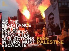 #palhunger