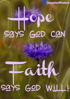 Hope says God can. Faith says God will! Discouragement: is where Hope is lost because we take our eyes of of God and focus on self.Faith keeps God's promises in our hearts and mind. Put on the armour of God each new day, Ephesians Life Quotes Love, Quotes About God, Faith Hope Love Quotes, Hope And Faith Quotes, Bible Verses Quotes, Bible Scriptures, Biblical Quotes, Religious Quotes, Spiritual Quotes