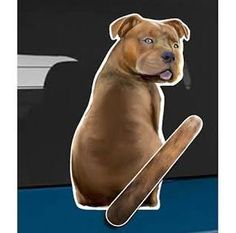 dog decal for rear wiper - Google Search