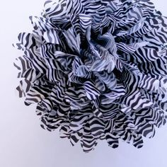 "Dress My Cupcake 14"" Zebra Tissue Paper Pom Poms, Set of 4 - Animal Print Parties & Zebra Print Decorations for Bridal Showers by Dress My Cupcake, http://www.amazon.com/dp/B005UEERS2/ref=cm_sw_r_pi_dp_hY7brb0RYZXVT"
