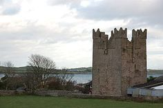 Kilclief Castle is a tower-house castle beside Strangford Lough and 2.5 miles south of the village of Strangford, County Down, Northern Ireland. It was the earliest tower-house in Lecale, and was built between 1412 and 1441. The castle was originally occupied by John Sely, who is said to have built the castle.