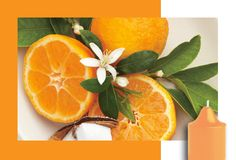 NEW! Juicy Clementine Available in Glo Lite candles as well as our full range #PartyLite #Glolite #EDV12014