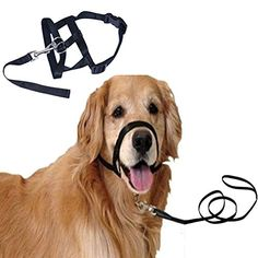 Freerun Pet Dog Nylon Adjustable Loop Bite Bark Control Easy Quick Fit Dog Muzzle With Leash  Black XXL >>> Click on the image for additional details.