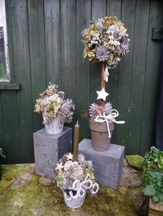 Topiary Christmas Arrangements, Topiary, Shrubs, Wind Chimes, Ladder Decor, Birds, Seasons, Garden, Outdoor Decor