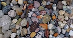 Can You Find What's Lurking Among These Rocks?