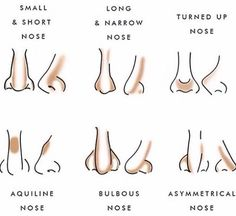 Nose contouring chart