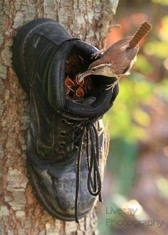 What to do with your old boots!