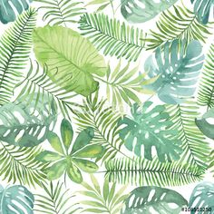 Tropikalny wzór z liści. Akwareli tło z tropikalnymi liśćmi.