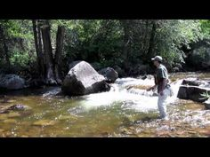 """interesting video, very fast water similar to cape streams """"How to Fly Fish Colorado's Freestone Streams"""" ve"""