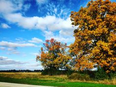 Fall colors 🌲🍁🍂