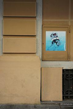 """Blub, """"L'arte sa nuotare"""". Omaggio a Freddie Mercury, Via del Campidoglio, Firenze (Toscana, Italy) - by Silvana, settembre 2014"""
