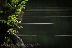 Taunton River in low light.