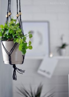 Easy, Scandinavian Interior, Blog, Warm And Cozy, Plant Hanger, Sweet Home, Plants, Inspiration, Home Decor