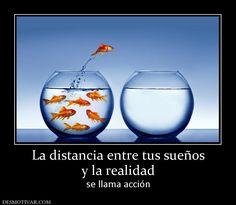 La distancia entre tus sueños y la realidad se llama acción