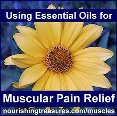 Essential Oils 101: Using Essential Oils for Muscle-Related Pain Relief