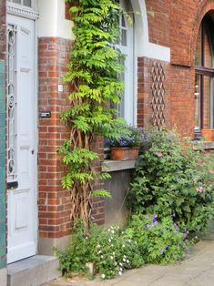 Growing Gardens, Small Gardens, Outdoor Gardens, Garden Deco, Balcony Garden, Dream Garden, Home And Garden, Tiny Garden Ideas, Garden Entrance